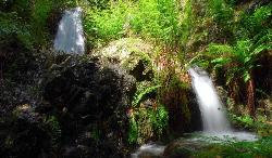 Waterfalls in the territory of Villacidro
